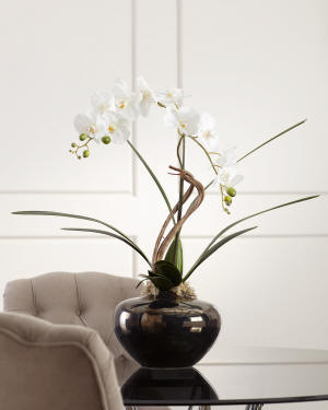 John-Richard Collection Artistic Orchid Arrangement